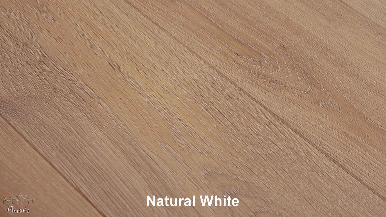 Kolekcja: ESCO Moravia, Kolor: Natural White
