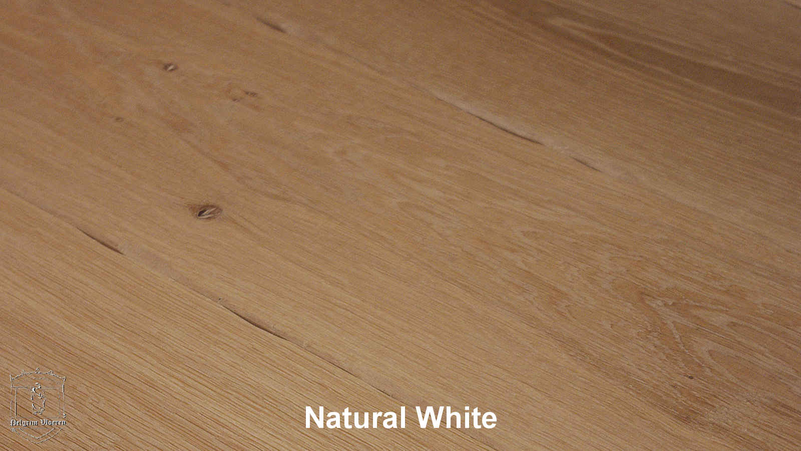 Kolekcja: ESCO Pelgrim, Kolor: Natural White