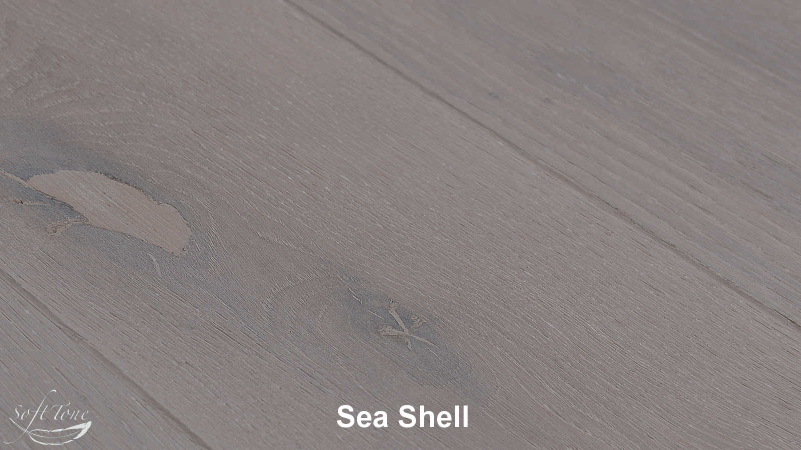 Kolekcja: ESCO Soft Tone, Kolor: Sea Shell