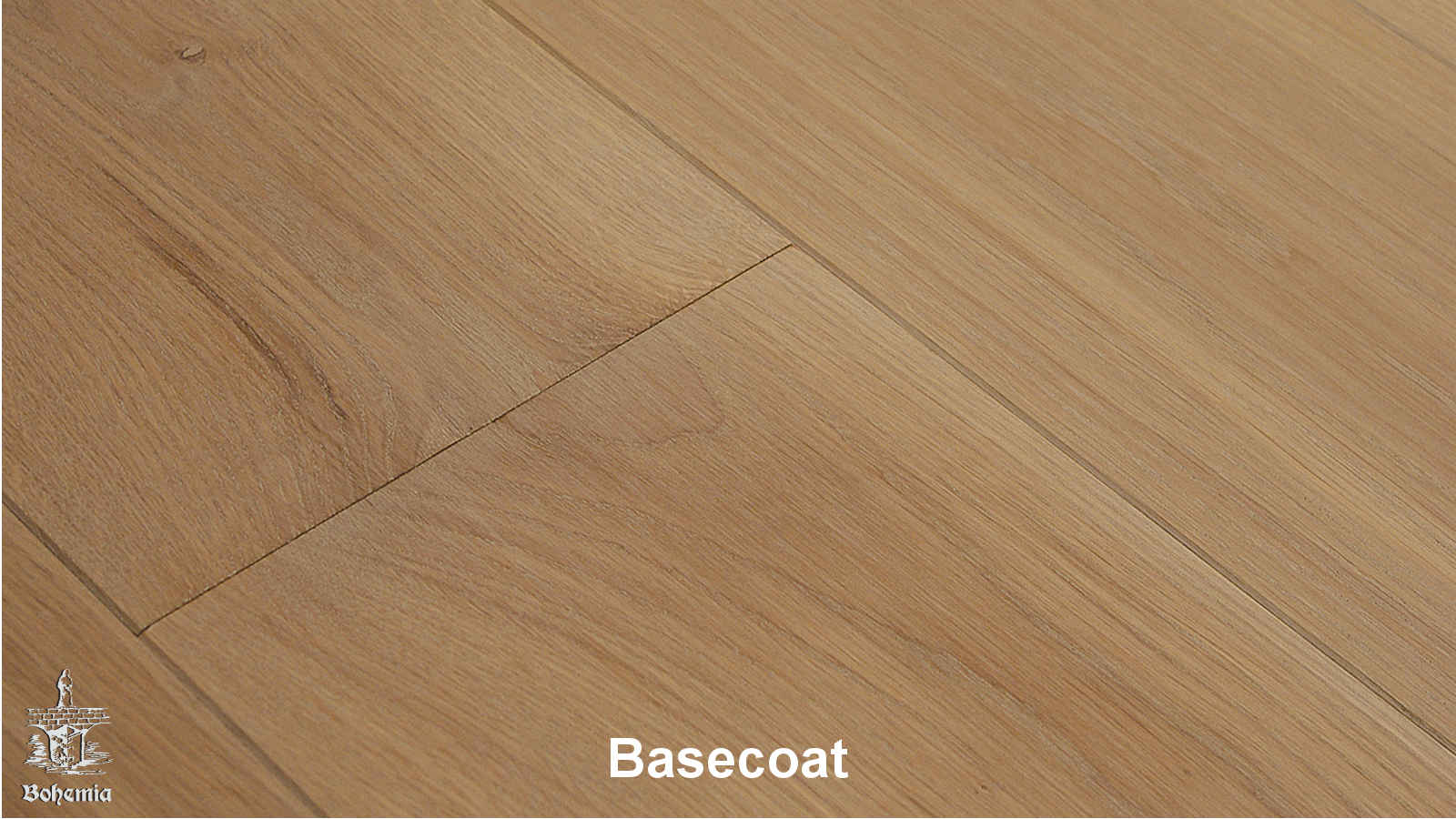 Kolekcja: ESCO Bohemia, Kolor: Basecoat